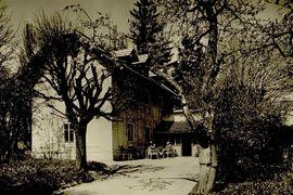 David Beveridge: Antonín Dvořák a příroda