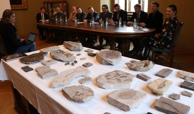 Národním muzeum má novou unikátní sbírku zkamenělin!
