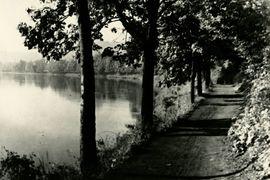 Komentovaná prohlídka výstavy Antonín Dvořák: Inspirace přírodou