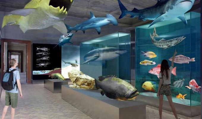 Národní muzeum představuje budoucí podobu Přírodovědeckých expozic