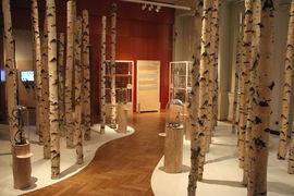 Komentovaná prohlídka výstavy Doma na Sibiři