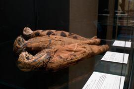 Zvířecí mumie ve starém Egyptě