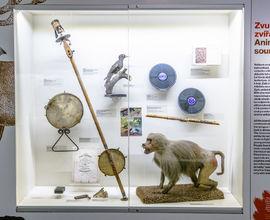 Výstava Hudební zvěřinec v Českém muzeu hudby