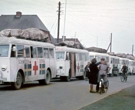 Dánsko-švédský evakuační konvoj bílých autobusů Červeného kříže, který přijel do Terezína 13. dubna 1945.