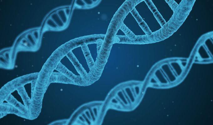 Aspoň na víkend zavítej do genetické laboratoře!