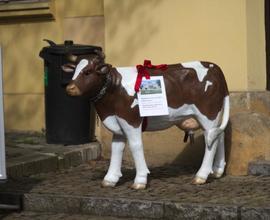 Oblíbeným terčem fotoaparátů návštěvníků se stala kravička u vstupu do jednoho z objektů muzea.