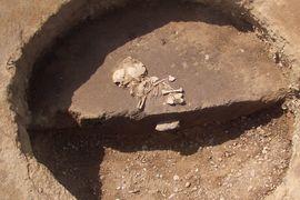 Studium doby kojení, odstavu a následné stravy dětí ve starší době bronzové na lokalitě Vliněves, okr. Mělník