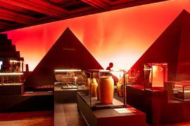Výstava Sluneční králové prodloužena do 6. června 2021