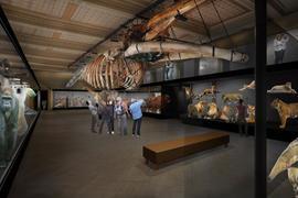 Národní muzeum představuje novou tvář
