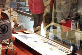 Pokusné ověřování v Národním muzeu